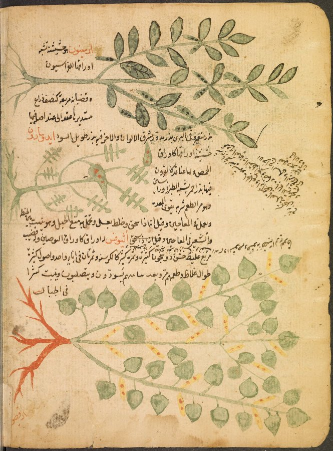 online cataloging and digitization for islamic manuscripts