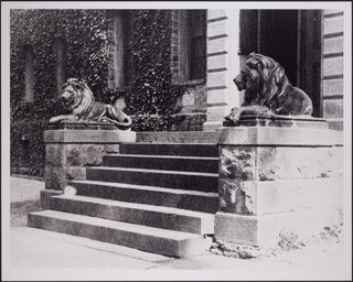 Lions at the entrance to Nassau Hall - Historical Photograph Collection, Grounds and Buildings, Box MP81 Image 3306