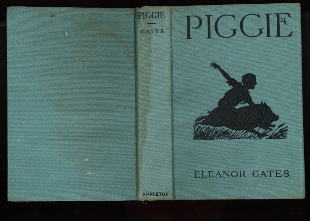 1919.Piggie.case