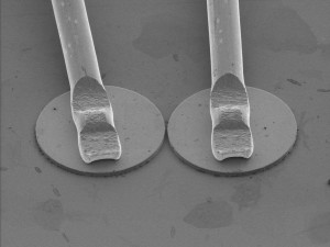 An electron microscope image shows two lasers placed just two microns apart from each other. (Image source: Turecki lab)