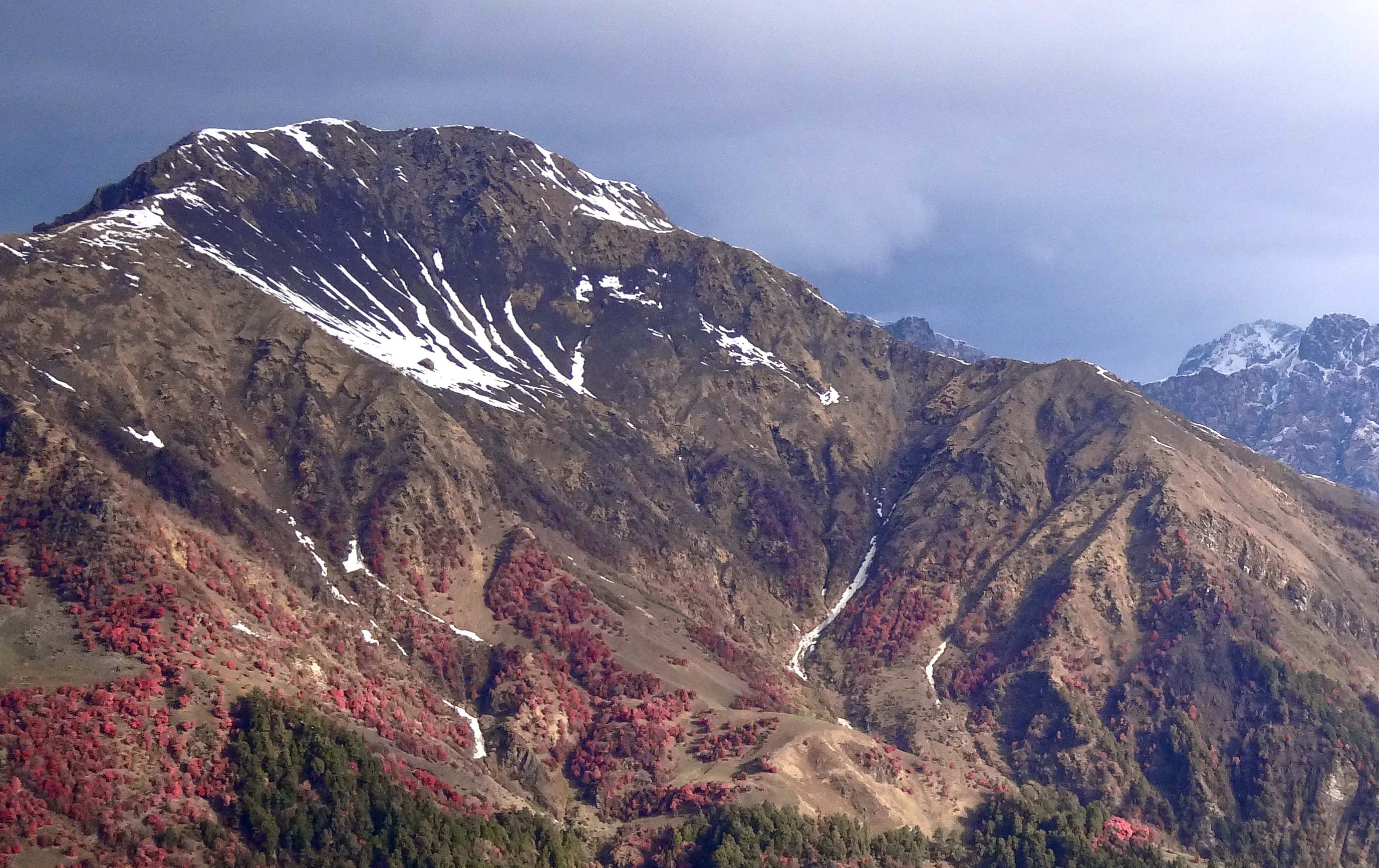 2015_05_18_Himalaya_Elsen