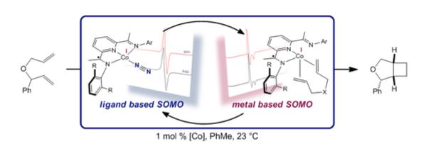 Schematic for cobalt-catalyzed [2pi+2pi] reaction.