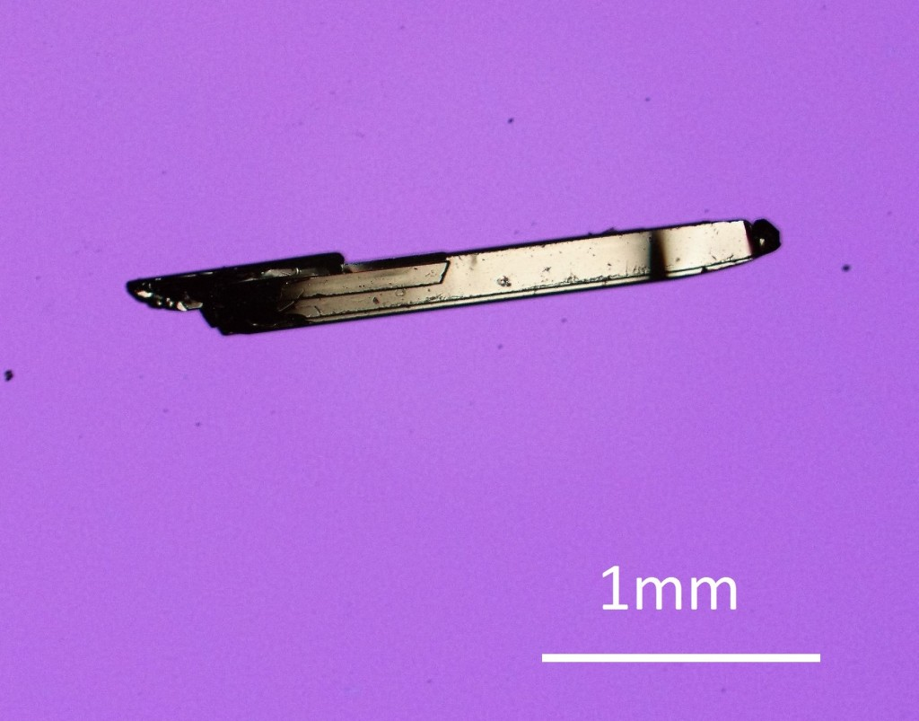tungsten ditelluride