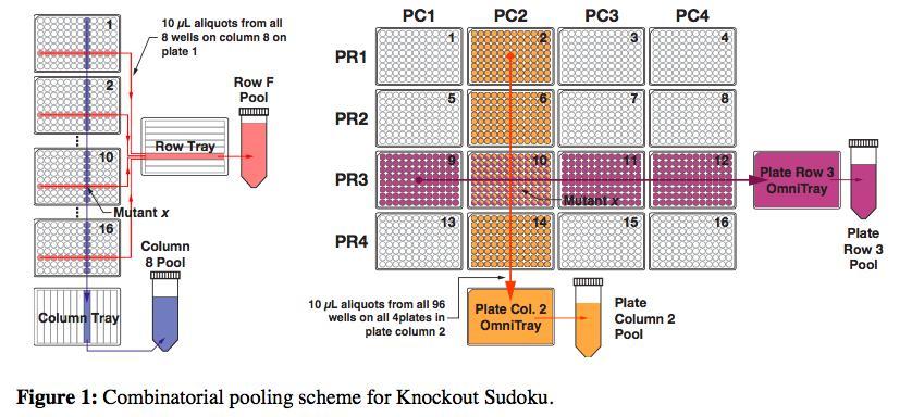 Knockout sodoku helps find genes' functions.