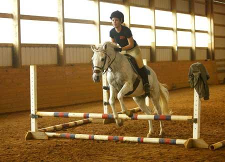 equestrianE79.jpg