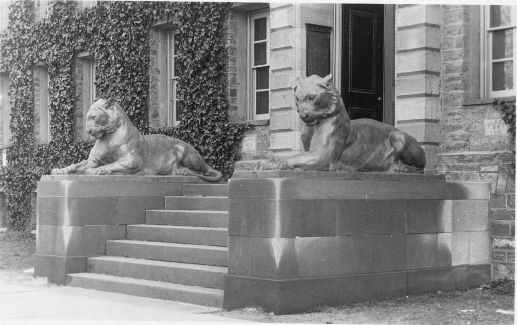 Tigers at Nassau Hall 1911 - AC111 Box MP71